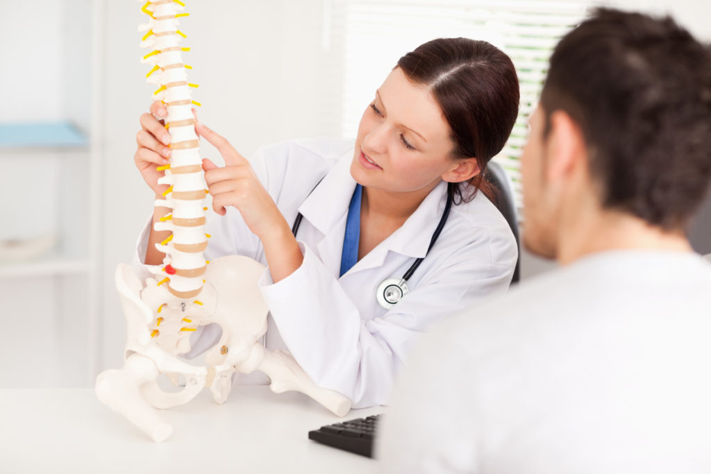 Chiropractor pointing out back issues on a skeleton